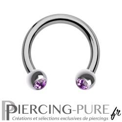 Fer à Cheval Titane Pierres violettes