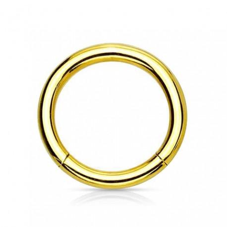Anneau segment Titane doré 10mm