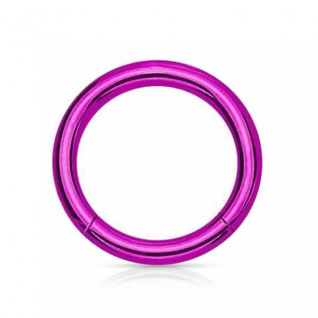 Anneau segment Titane violet 10mm