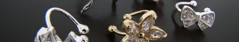 Découvrez des bagues d'oreilles dans cette catégorie de bijoux
